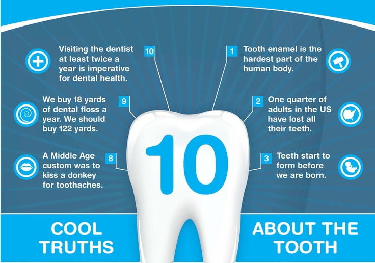 The best dental infographic of 2014